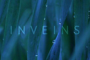 INVEINS