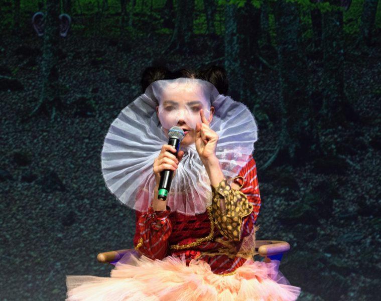Björk Sónar 2017
