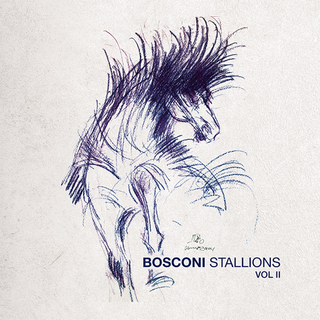bosconi stallions due